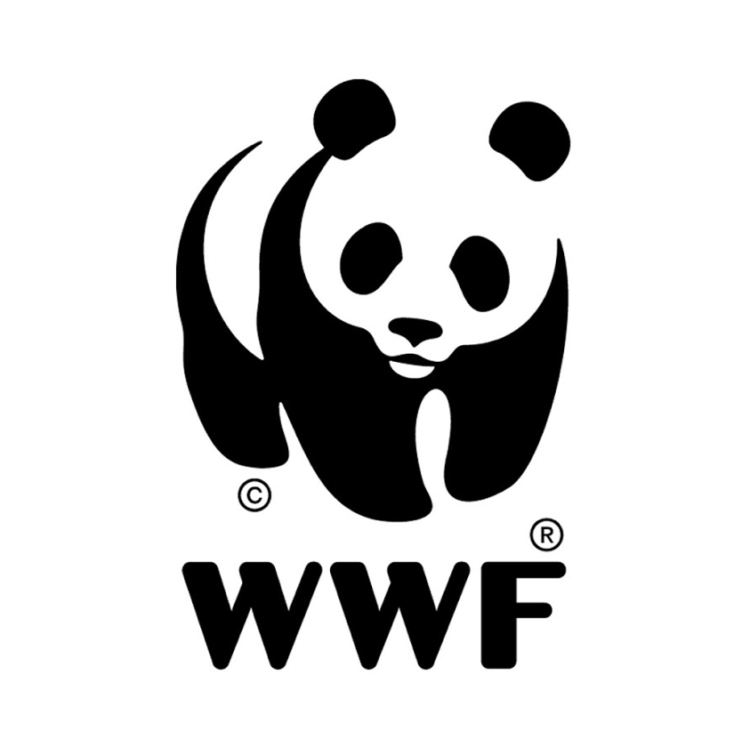 RM article – WWF – Earth Hour 2010